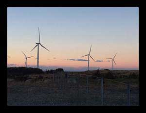 Image of wind turbines in sun set